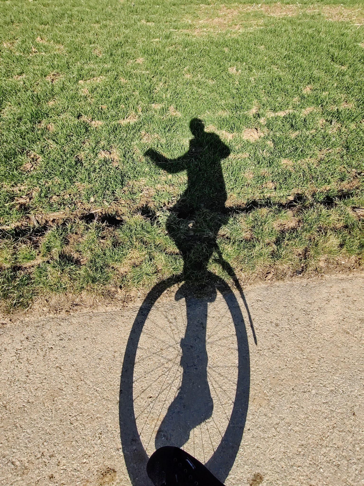 Schatten auf dem Weg